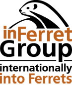 ���� ���������� ������� inFerretGroup